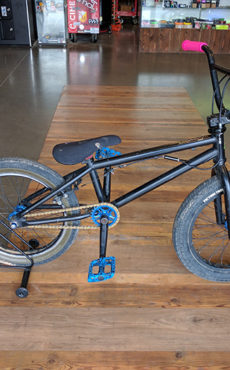 Custom 18in BMX Bike
